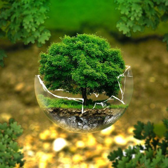 Suivre une formation dans le développement durable